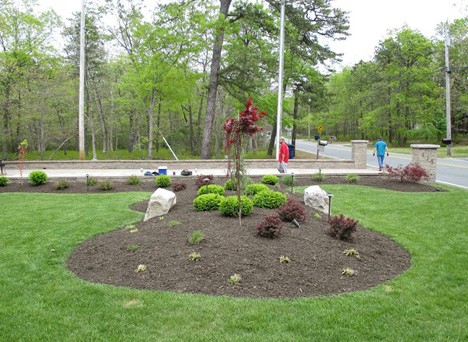 Taking Care of Plants and Trees in Egg Harbor Township, NJ